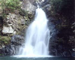 五十鈴川の源流